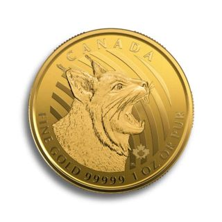 1 oz Goldmünze Call Of The Wild - Grizzly 2016