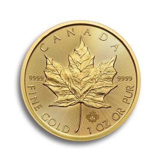 1 oz Canadian Maple Leaf Goldmünze
